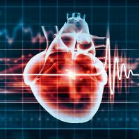Electrocardiography Non Invasive Cardiology