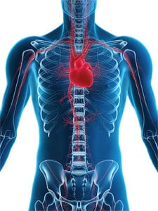 Cardiovascular Prevention Specialists Near ME
