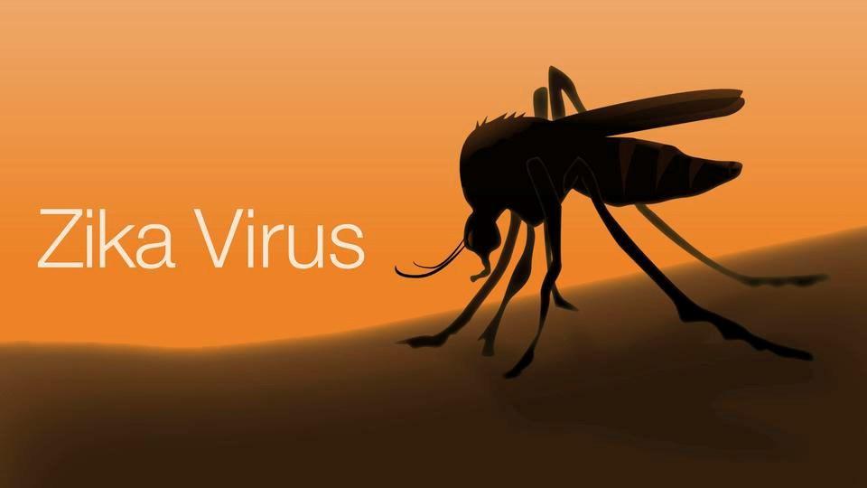 Long, Island New York Zika Virus